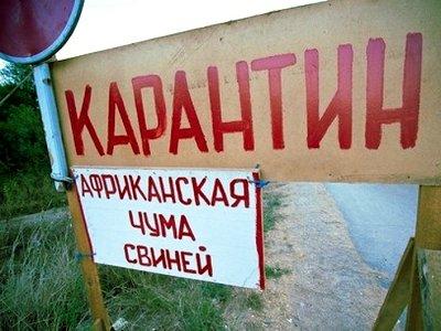 На границей с Белоруссией ввели карантин