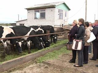 На Смоленщине появятся автоматы по продаже молока