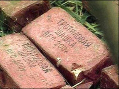 Житель Пржевальского нашел в лесу свыше ста килограммов тротила