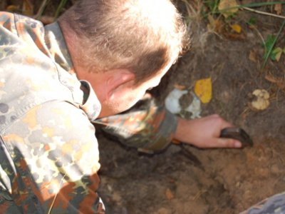 На острове озера Сапшо грибник из Смоленска нашел человеческий череп