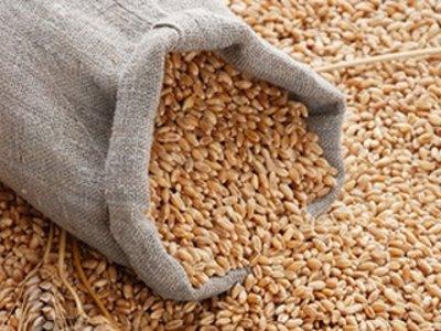 Гаишники поймали воров, укравших в совхозе 600 килограммов зерна