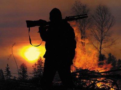 Ночь не укрыла браконьеров, убивших лося, от охотинспектора