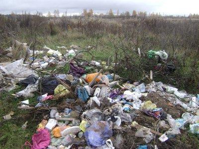 Руднянских чиновников обязали заняться мусором