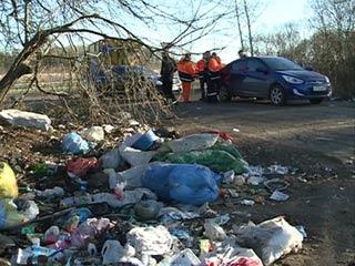 Трасса Смоленск-Брянск погрязла в мусоре