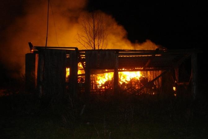 У смоленских фермеров сгорело шесть тонн сена