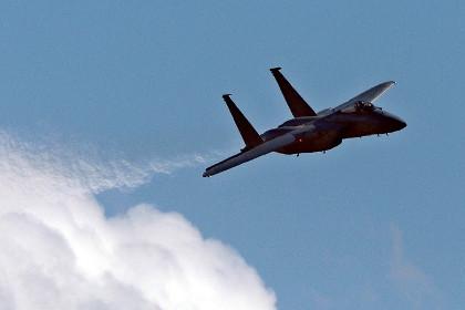 Пентагон вдвое увеличит число истребителей в Прибалтике