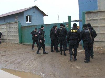 Операция «Правопорядок» выявила наркодилера, торговцев оружием и гадалку-воровку