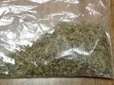 В сумке умершего студента следователи нашли подозрительную растительную массу