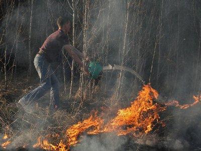 Селяне спасли свои деревни от пожаров, выйдя на борьбу с палом сухостоя