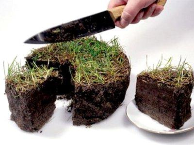 Сельская глава за махинации с землей получила условный срок