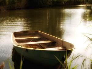 шейновский карьер рыбалка