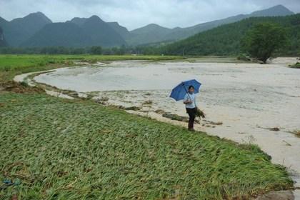 От наводнений в Китае пострадали 60 тысяч человек