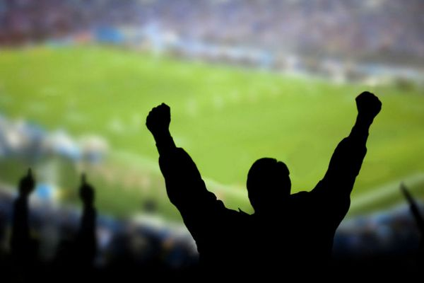 Смоленские футбольные фанаты устроили дебош