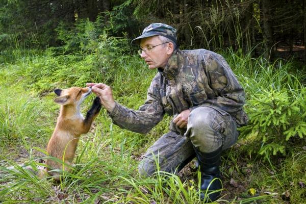 Лисы, медведи, олени – братья наши меньшие