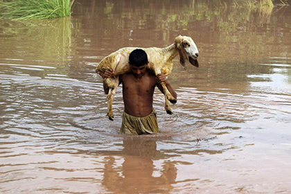 В Пакистане жертвами наводнений стали более 260 человек