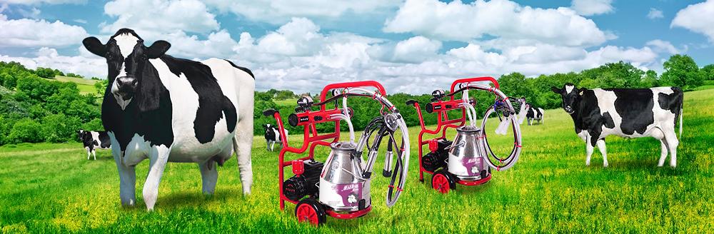 Доильные аппараты для повышения качества и количества удоя