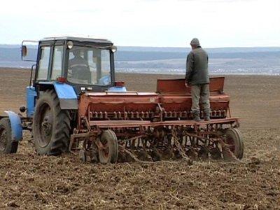 Смоленским аграриям реструктуризировали долги на миллиард рублей