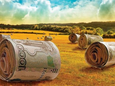 Смоленский аграрий нагрел бюджет на 11 миллионов рублей