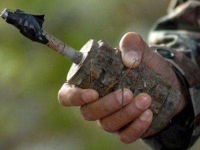В шумячском лесу мужчина нашел почти полсотни гранат