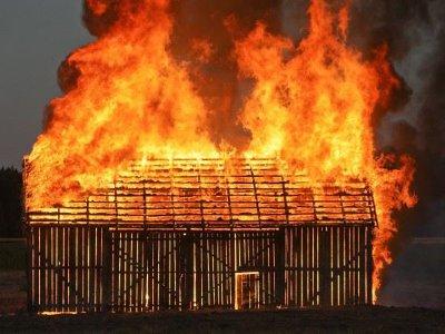 Гуси, куры и свиньи погибли в запылавшем среди бела дня сарае под Смоленском