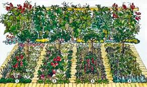 Разбивка огорода