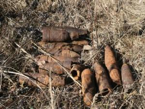 Селянин откопал на своем огороде 13 минометных мин