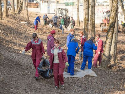 Властям не удалось привлечь ТРЦ «Макси» к уборке парка