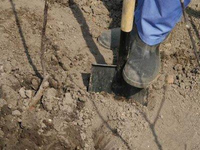 Белорусский гастарбайтер убил и закопал своего напарника