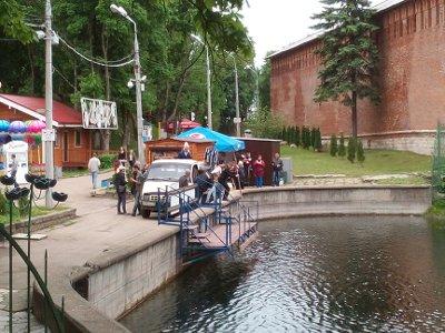В пруды Лопатинского сада запустили еще 300 кило карпов и белых амуров
