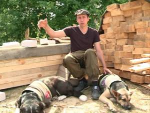 В Смоленске появится приют для бездомных собак, построенный силами энтузиастов