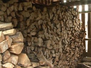 В лесничествах Смоленской области ведутся работы по заготовке древесины и дров для нужд населения