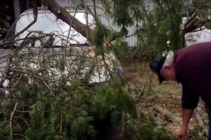 В результате урагана в Сиэтле погибли два человека