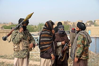 Талибы захватили стратегически важный афганский город Муса-Кала