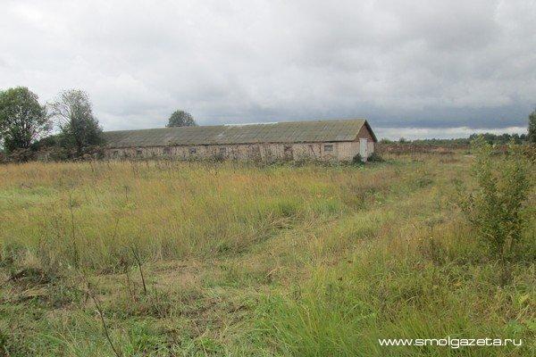 В Смоленской области лето отступает, но пока не сдается