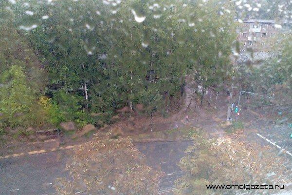 В Смоленской области будет холодно и сыро