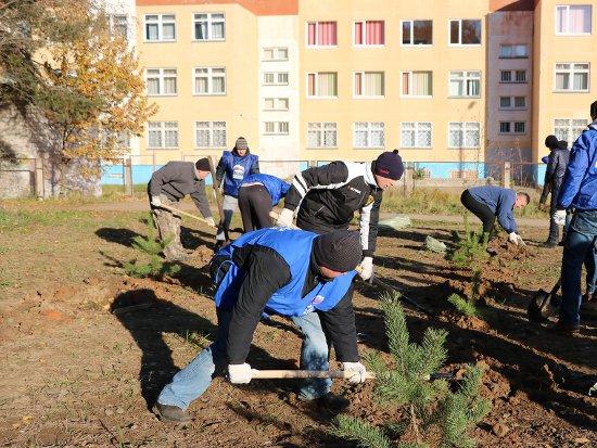 В преддверии Дня народного единства Смоленск убрали от мусора