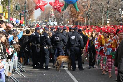 В Нью-Йорке задержали россиянина за запуск беспилотника в парке