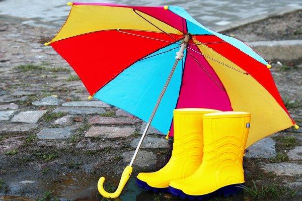 В Смоленской области дожди продержатся до конца недели