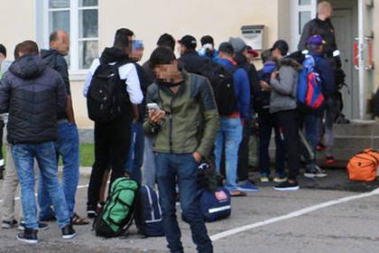 В Финляндии беженцев-мусульман направили в бывший центр свиноводства