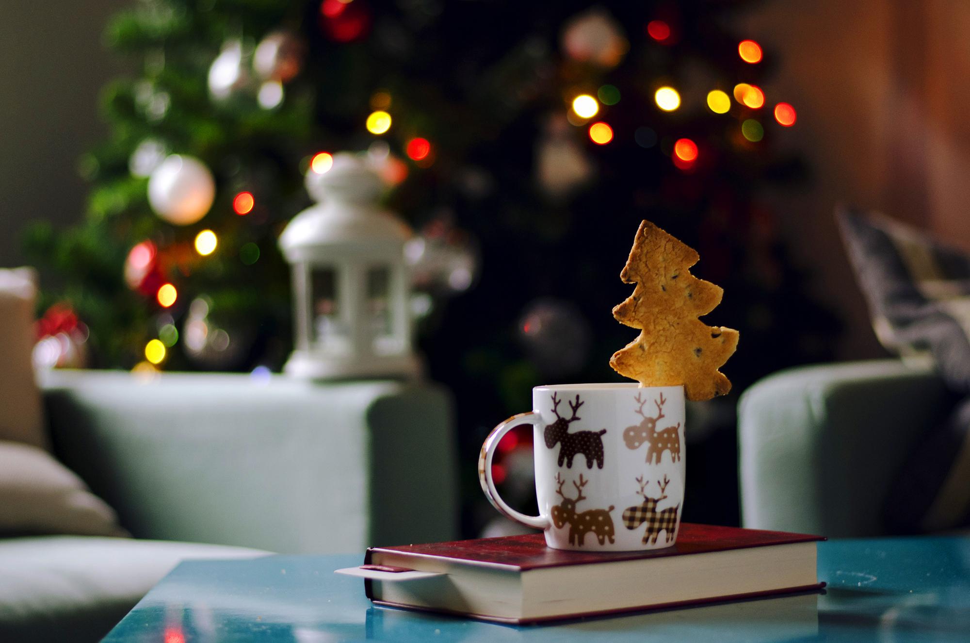 Книги под елку