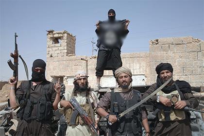 Российский МИД пересчитал террористические организации в Сирии
