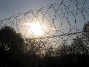 Наказание за бунт в колонии понесли 14 тюремщиков