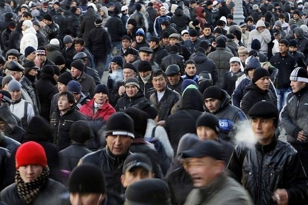 Приставы выдворили 237 иностранных граждан, незаконно пребывающих в Смоленской области