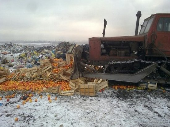 Под Смоленском уничтожили 40 тонн импортных груш и хурмы