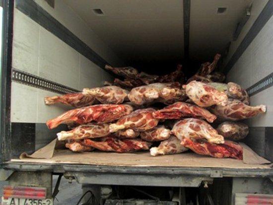 Под Смоленском «завернули» белорусскую свинину и говядину