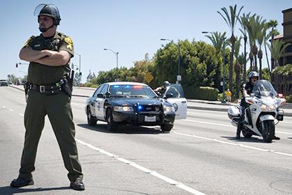 Калифорнийские полицейские арестовали позолоченного наркомана