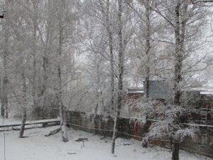 В Смоленске выпал апрельский снег
