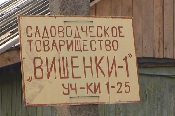 В Смоленске задержали дачного воришку