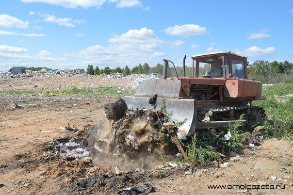 В Смоленской области, предварительно измельчив, захоронили более 77 тонн яблок