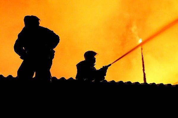 В Смоленской области пожарные спасли из огня 23 бычка